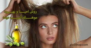 احیای مو